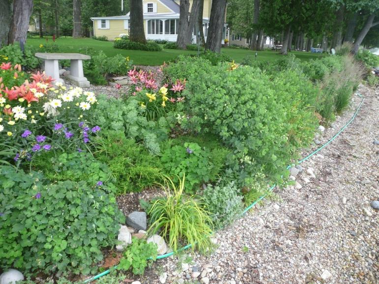 Landscape Greenbelt#1